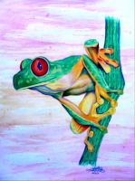 Red-Eyed Treefrog by FreedomSparrow3