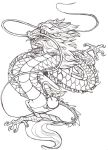 tattoo CHINESE DRAGON by Anarchpeace