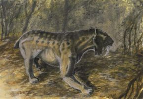Smilodon populator by tuomaskoivurinne