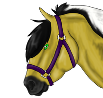 AIHR Rowg Prize by EquusEquidae