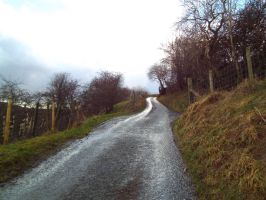 Hill side lane by buttercupminiatures