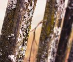 Weathered Boundaries by lovelife99