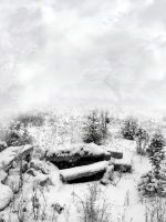 Winter random stock by SimplyBackgrounds