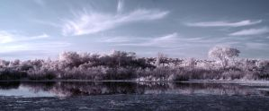Quarry in IR by star-fire