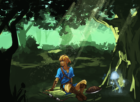 Link in the Wild by Bev-Nap