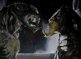 AVP predalien and predator by sullen-skrewt