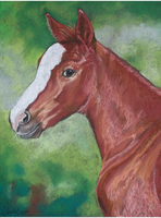Foal - Pastel by BLACKNIGHTINGALE81
