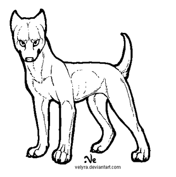 Pitbull lineart by Velyra