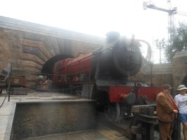 The Hogwarts Express 9 3/4 by RarityLuver214