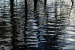 Bulbararing lagoon reflections 1 by wildplaces