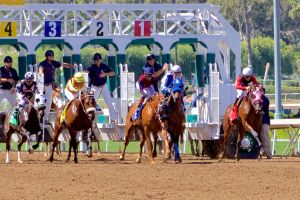 Santa Anita starting gate 1 by Codyrc74