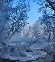 Winter mood by KariLiimatainen