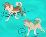 Dog Adoptables Sale {Closed} by JackdawTheFabulous