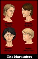 The Marauders Coloured by BerenicePotter