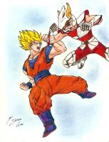 DBZ vs SS by Shinta-Girl