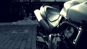Honda Hornet 4ever by hcsaszy