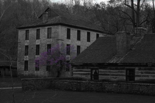 The Mill in Spring by GreeneCounty
