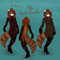 Fursona-Red Panda- UNNAMED by madlyinlov3