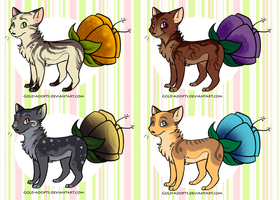 Flowercat adopts closed by gold-adopts