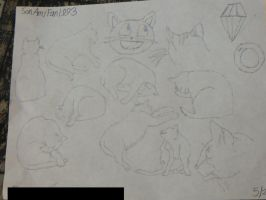 Cat Sketches by SonAmyFan1993