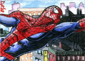 Spiderman NYC Sketch Card by DKuang