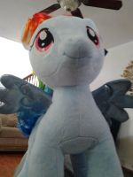 Build a bear  Rainbow Dash by Bluedragon85