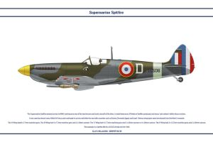 Spitfire Mk IX France 2 by WS-Clave