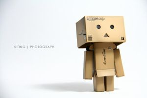 Danbo v.1.1 by kitinggiling