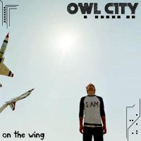 Owl City On The Wing by Denjo-Reloaded