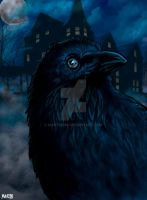 Quote the Raven... by Martin666