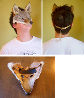 Small Coyote Mask (sold) by wylieblais