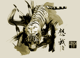Chinese Tiger by IsACoolGuy