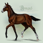 Armand as Foal by Tigra1988