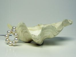 Clam Shell with Pearls Stock8 by NoxieStock