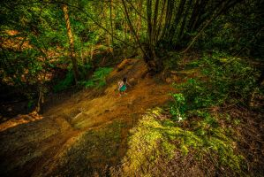 The Strugle of the climb by atmp