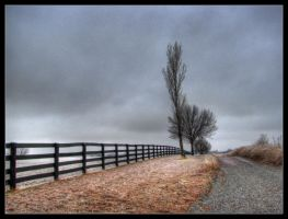 Overcast road by aaronbee
