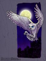 Snowy Owl Illustration by jameskoenig1