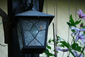 lamp by saliyalein