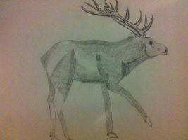Stag by Nutmeg777