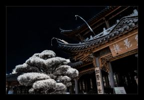 Chinese Teahouse II by vw1956