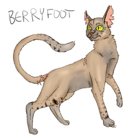 BerryFoot by HollowThinker