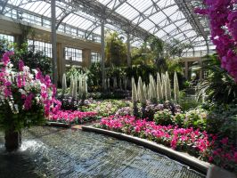 Longwood Gardens 1 by ShelbyGT-500KR