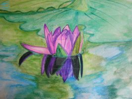 Water lily by dreamyjoker