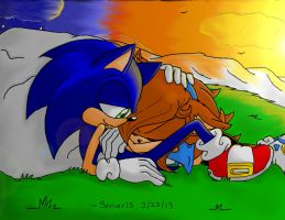 Sonic and Sonar: Spending the sunset with you by Sonar15