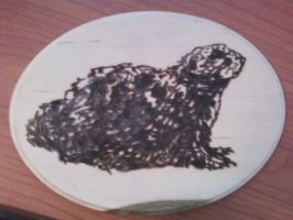 Pyrography - Prarie dog by naaxha