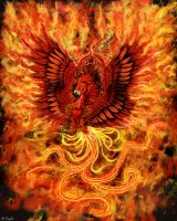 The rise of the Phoenix by Ruth-Tay