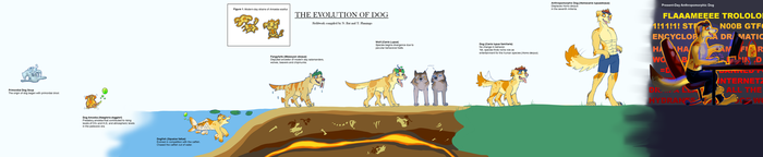 The Evolution of Dog by Lyritwolf