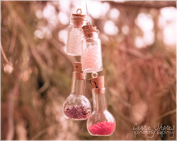 Fairy Bottles by Coraleat