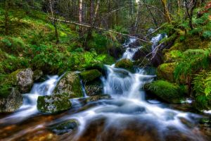 Waterfall in The Forest by PhotoForever88