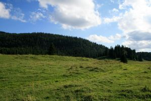 alpine meadow 04. by greenleaf-stock